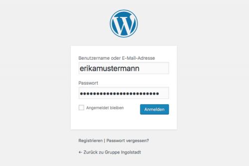 Ansicht eines WordPress-Logins